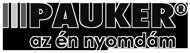 pauker_logo_gray_x